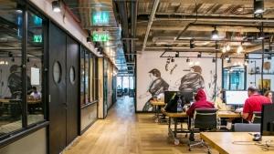 birouri spatii corporate idei