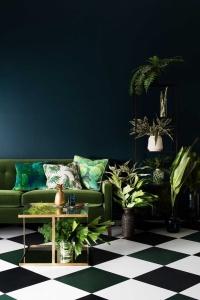 design interior plante verzi atmosfera proaspata
