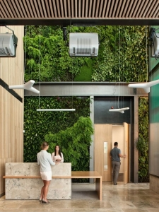 receptie design interior perete verde gradina verticala